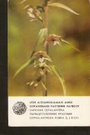 Old Collectibles Soviet Calendar Latvia Riga LSSR USSR 1984 Protected Plant Flora Flower - Cephalantera Rubra (L.) Rich - Calendars