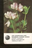 Soviet Latvia Riga LSSR USSR 1981 Protected Plant Flora Flower Coronilla Varia L. Old Small Calendar Collectibles - Calendars