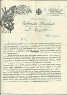 AUSTRIA  --  WIEN  --  SAMENHANDLUNG GEBRUDER BOSCHAN  --  1912  --   PREISLISTE  --  BIG FORMAT - Österreich