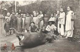 Viet-Nam : Hué, Roussage D'un Boeuf Pour Une Fete Publique - Vietnam