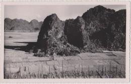 Carte Photo ,asie,viet Nam,la Baie D´along,baie D´ha Long Terrestre En 1952 Aprés Les Travaux Des Français,rare - Vietnam