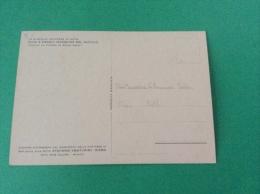 Le storiche contrade di SIENA - Duce e Paggio Maggiore del Nicchio - cartolina FG C NV