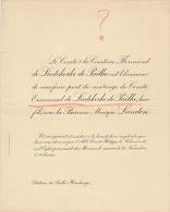 Comte Florimond De Liedekercke De Pailhe Baronne Lunden Chateau à Havelange - Boda