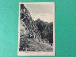 QUERCETA - Lizzatura Blocchi Dalle Cave, Animata - Cartolina FG NV 1938 - Italy