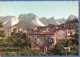 BEDIZZANO- CARRARA - F/G  Colore  (11 1009) - Carrara