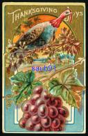 Thanksgiving  Joys -  Dinde  - Turkey - Raisin - Carte Gaufrée - Embossed Card -  - Illustrateur - Thanksgiving