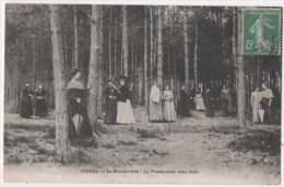 OISSEL - Le Sanatorium - La Promenade Sous Bois - Non Classificati
