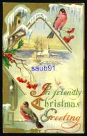 Noël - An Friendly Christmas Greeting - Oiseaux  Et Paysage - Carte Gaufrée - Embossed Card - Réf:31957 - Noël