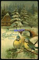 Noël - Merry  Christmas To You  - Oiseaux  Et Paysage - Carte Gaufrée - Embossed Card - Réf:31953 - Noël