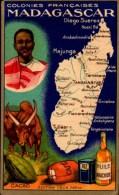 CHROMO FELIX POTIN...MADAGASCAR... - Félix Potin