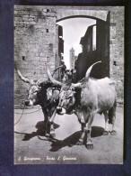 TOSCANA -SIENA -SAN GIMIGNANO -F.G. LOTTO N�392
