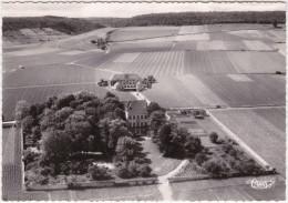 CPSM - GF - Aloxe Corton (C. D'Or) Vue Aérienne - Château Et Cuverie De Corton Grancey - Propriété Louis Latour - Grands - Non Classificati