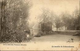 SCHOONHOVEN (Aarschot) - De molen / le moulin de Schoonhoven - Uitg. Vertruyen - 1907 - rare - TOP