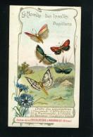 Chocolaterie Aiguebelle - Papillons - Incarnat - Pourprée - Marcassite - Adele De Reaumur - Queue Jaune - 10 087 - Aiguebelle