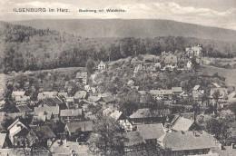 Ilsenburg Im Harz. Buchberg Mit Waldhöhe - Ilsenburg