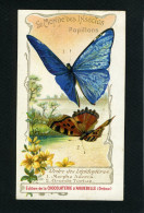 Chocolaterie Aiguebelle - Papillons - Lépidoptères - Morpho Adonis - Grande Tortue - 10 088 - Aiguebelle
