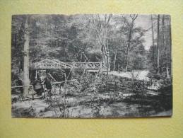 Le Pont Du Parc. - Bronx