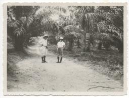 Foto/Photo. Congo. Hommes & Casques Coloniaux Devant Palmiers - Afrique