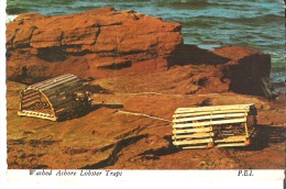 Washed Ashore Lobster Traps, Prince Edward Island  Washed Ashore After A Big Storm - Other