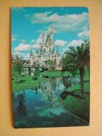 Disneyland. Le Château De Cinderella. - Orlando