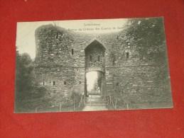 SALMCHÂTEAU  -  Ruines Du Château Des Comtes De Salm    -  1919   -     (2 Scans) - Vielsalm