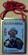 Aalst - Karnaval Oilsjt - AKV De Toisers - Plaquette In Metaal - Origineel - Nieuwstaat - Carnaval