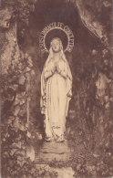 Edeghem - Grot Van O L V Van Lourdes (Immaculée Conception) - Edegem