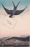 AK Gruss Aus Einsiedeln - 1917 (8824) - SZ Schwyz