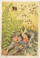 Illustrateur Signé.Gnome.Lutin Et Enfants. Escargot. - Illustrateurs & Photographes