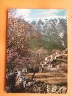 V09-84-amandiers En Fleurs-brantes Et Le Mont Ventoux-- - Altri Comuni