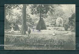 SICHEM: Park Van Het Oranjekasteel, Gelopen Postkaart 1908 (GA17646) - Scherpenheuvel-Zichem