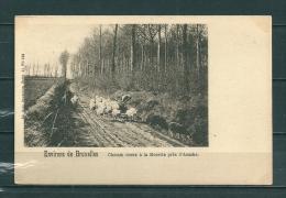 ASSCHE: Chemin Creux A La Morette, niet gelopen postkaart (GA18040)