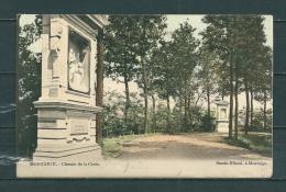 MONTAIGU: Chemin De La Croix, Gelopen Postkaart 1906 (GA18694) - Scherpenheuvel-Zichem
