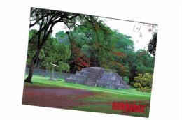 Amérique - Honduras Ruines De Copan - Ruinas De Copan - Honduras