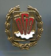 OGB - Austrian Trade Union Federation, enamel, vintage pin, badge, silver