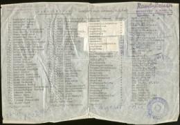 TEMPORARY PASSPORT FOR 35 PERSONS LINZ TO CROATIA CONSULAR REVENUE STAPMS 1963 - Historische Documenten