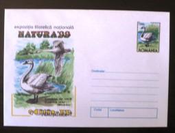 ROUMANIE Oiseaux, NATURA 99 Timisoara Entier Postal Neuf , Emis En 1999 - Swans