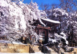 SOUTH KOREA COLOUR PICTURE POST CARD - O SU MUN GAE IN CH'ANGDOK PALACE, CHUNCHON - Korea, South