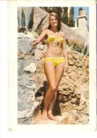 CALENDARIO DEL AÑO 1972 DE UNA CHICA SEXI (NUDE) (CALENDRIER-CALENDAR) - Tamaño Pequeño : 1971-80