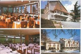 CPM 05 - Saint Firmin - Hôtel Des Alpes - Chez Gaston - Frankreich