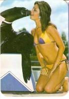 CALENDARIO DEL AÑO 1977 DE UNA CHICA SEXI (NUDE-DESNUDO) (CALENDRIER-CALENDAR) - Tamaño Pequeño : 1971-80