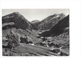 10298 -  L'Etivaz La Tornettaz Et La Cape Au Moine ( Format 15X10) - VD Vaud