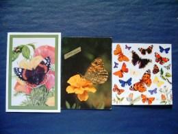 3 Postcards On Butterflies - Alzheimer - NHM London - Belgium USA - Butterflies