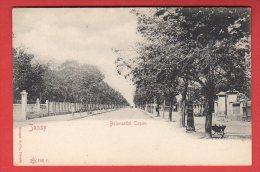 CPA: Roumanie - Jassy - Bulevardul Copou - Roumanie