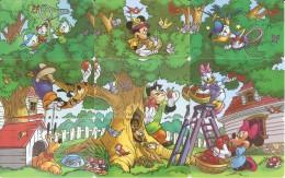 SERIE COMPLETA DE 9 TARJETAS DE ARGENTINA DE DISNEY (MICKEY MOUSSE) PUZZLE - Disney