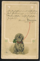DOG HUNDE DACHSHUND DACKEL OLD POSTCARD #315 EMBOSSED - Chiens