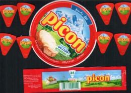 "étiquette- Boite De Fromage ""PICON""- Serie-76022846-24 P - Cheese"