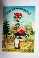 Allemagne  : Gub Vom Schluchsee Im Schwarzwald ( Carte Système  ) - Hinterzarten
