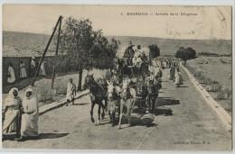 ALGERIE - GHARDAIA - ARRIVEE DE LA DILIGENCE - Ghardaïa