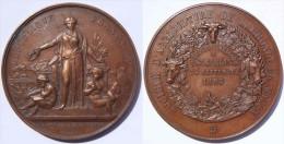 Bourgogne Saône-et-Loire La Roche Vineuse (Saint Sorlin) Médaille Concours Agricole 1893 Avec Légende Fautive St Sarlin - Professionnels / De Société